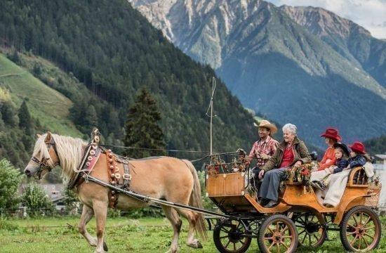 urlaub-auf-dem-reiterhof-suedtirol-kutschfahrten (2)